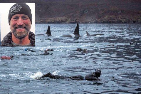 Svømming med spekkhoggere kan være en flott opplevelse, ifølge hvalforsker og naturfotograf Audun Rikardsen (innfelt). Men man må gjøre det på dyras premisser.