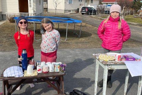 Anna Oline Høgmo (7), Adele Østensen (8) og Matilde Østensen (10) solgte kaffe og nystekte vafler i Bekkefaret på Gravdal mandag.