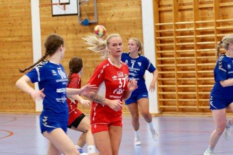 TILBAKE PÅ TRENING: Seniorlaget til Lyngdal IL er tilbake på trening i Lyngdalshallen igjen, etter koronapausen.
