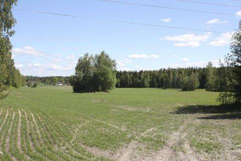 DET VAR EN GANG..: Her på Svinskaug gård i Garder lå det inntil nylig en seks hulls golfbane.
