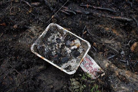 FRARÅDES: Grunnet skogbrannfare frarådes all bruk av åpen ild i mossedistriktet over påskehelgen.