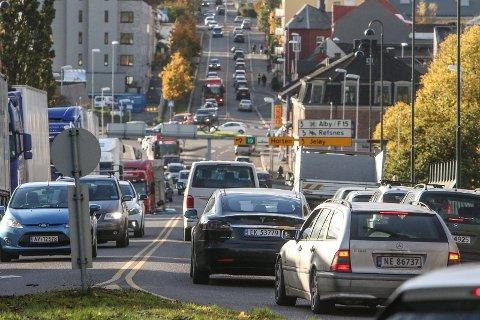 KØER: Trafikkaos og køer er et kjent fenomen i Moss.