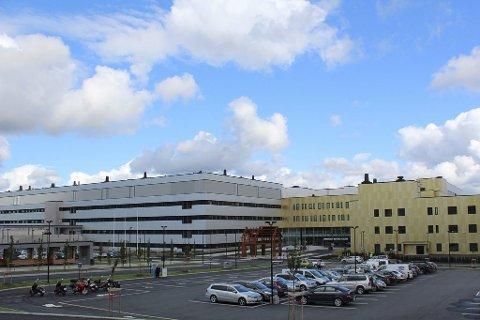 Kjepphest: – Gjennom flere år nå har vi også sett en rekke eksempler, blant annet utbyggingen av E6 og E18 og Sykehuset Østfold, som viser hva vi får til når vi samler oss, skriver fylkesordføreren.