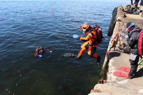 DYKK: En rekke dykkere hoppet i havet for å rydde under vann på den store strandryddedagen.