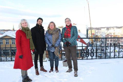 DYR OG MILJØ: Benedicte Lund (MDG) vil ha lasershow i stedet for fyrverkeri nyttårsaften og får støtte av Shakeel Rehman (Ap), May Hansen (SV) og Eirik Tveiten (Rødt).