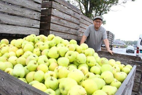 NOK ET TYVERI: Innehaver Pål Larsen måtte konstatere at noen hadde forsynt seg av eplemottakets på Høyda nok en gang.