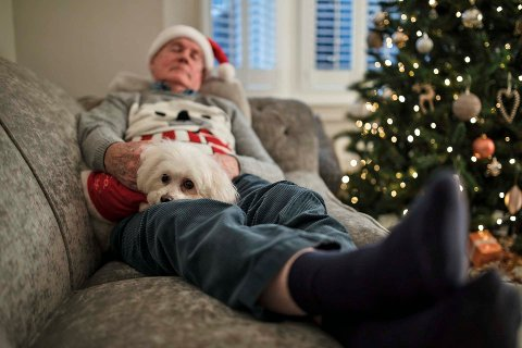 Senior man is napping on the sofa in the living room of his home, with his pet dog on his lap. The dog is wearing a christmas jumper.