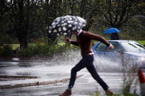 REGN OG VIND: Det har både regnet og blåst kraftig i mossedistriktet søndag morgen.