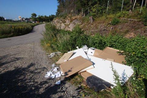 FORSØPLING: På stien ved E6 på Storebaug i Moss ble det oppdaget et lass med søppel, dumpet i naturen lørdag ettermiddag.