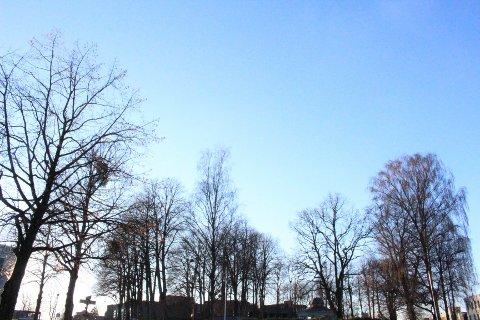 KNALLVÆR: Helgen denne uken avsluttes med strålende vær. Ifølge meteorologen bør man nyte det.