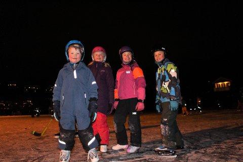 SKØYTER: Tross litt knall og fall på skøyteisen på Jeløy, var det ingen tvil om at både små og store koste seg.