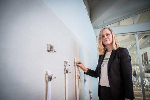 BLIR KJØPT OPP: Cecilie Bjørgås Jordheim fra Namsos er blant kunstnerne som Kunstmuseet Nord-Trøndelag kjøper verk av.