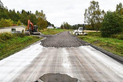 VEG: Engasjementet rundt utbedringsprosjektet på Fylkesveg 771 har vært stor.