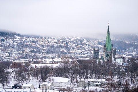 Pollensesongen er i gang i Trondheim, og den er ventet å bli kraftig.