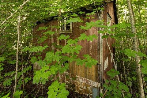 Denne hytta, som ikke er blitt brukt på om lag 50 år, er solgt etter første visning.
