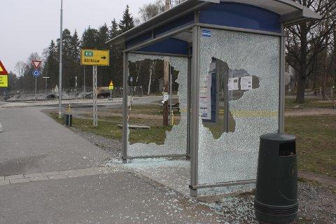 HÆRVERK: Hvem som lot sin hærverkstrang gå ut over dette busskuret natt til 1. mai, er foreløpig uklart. FOTO: Arne Vidar Jenssen