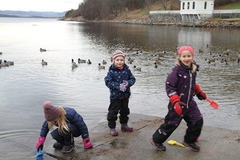 MILDT: Sigrid, Silja og Elsa fra Tårnåsen på Kolbotn hadde tatt turen til Hvervenbukta på lørdag. Foto: Arne Vidar Jenssen