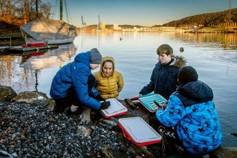 RÅD OG RUR: Elevene observerer hvordan rur slår seg ned på fjærestein og tegner for å lære. Underveis får de mange gode råd fra billedkunstner og vannskapsarkitekt Elin T. Sørensen