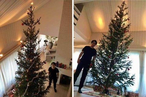 DU GRØNNE, GLITRENDE: Juletreet hjemme hos Sebastian og familien er av det majestetiske slaget.