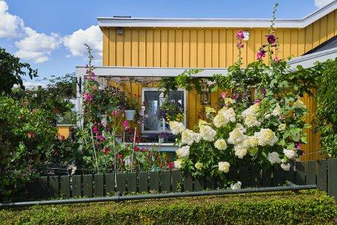 Trusl har jobbet for å få hagen fin de siste 15 årene. Nå får han kommunens hagepris for den.