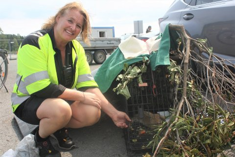 Anne Louise Leikfoss fikk til slutt fanget kaninen. Den ble satt i et hundebur som var til ombruk.