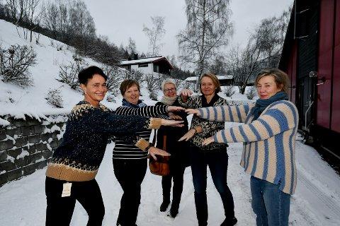 Deler av FACT-team Nord-Gudbrandsdal: Elisabeth Fossmo Lien, Anne Kristin Fuglum, Anne Lise Hagen, Marit Dagsgard og Kari Halvorsen.