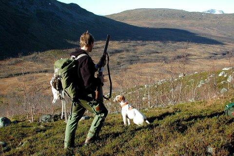 DÅRLIG SESONG: Nok et svakt rypeår på statsgrunn i Troms.