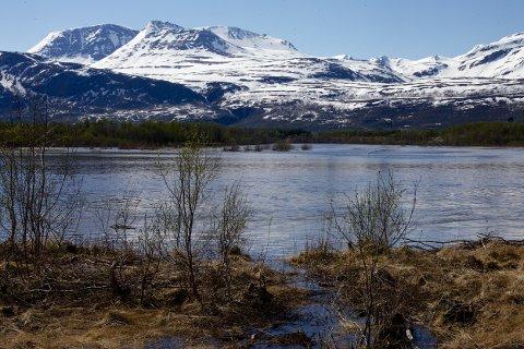 Fredag formiddag flommet det vann inn over bredden av Reisaelva her i Gorosokroken ved Storslett. Foto: Ola Solvang
