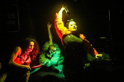 DRAGSHOW: Jens Martin Hartvedt Arvesen («Cassie Brødskive»), Peter Ramthun («Eliza Fierce») og Katinka Steensgaard («Elektra Puzzz») ga et uvanlig show på Prelaten i Tromsø torsdag kveld. - Jeg vil formidle at jeg er den jeg er og at mangfold er positivt, sier Steensgaard.