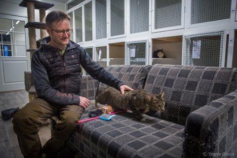 VENTELISTE: I juli er det venteliste på Tromsø Kattehotell. Anders Eilertsen driver hotellet, og har hatt katter på besøk fra hele Nord-Norge.