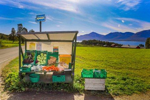 DRIVE-IN: Salgsboden ved busstoppet ovenfor Widding gård på Berg fylles hver dag opp med ferske egg og grønnsaker, til glede for forbipasserende.