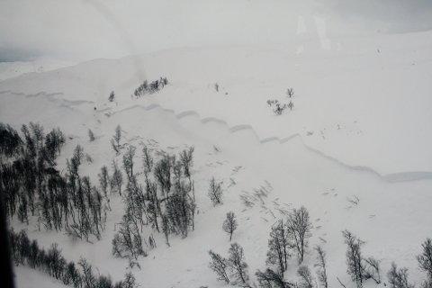 SKRED: Skredet gikk fra Reingjerdfjellet i Øverbygd, som ligger på grensen mellom Balsfjord og Målselv.
