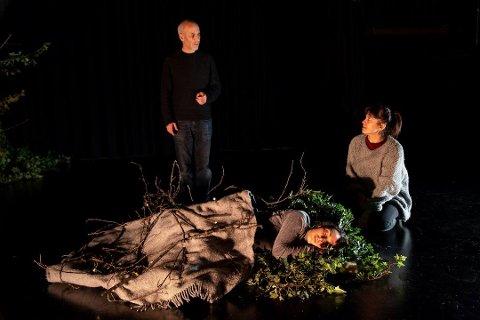 TIL TROMSØ: Teaterstykket «Ways Of Seeing» har skapt furore. Nå er forestillingen satt opp i Tromsø,  under scenekunstfestivalen Vårscenefest i Tromsø. Foto: Leif Gabrielsen