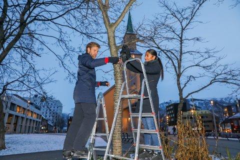 KIRKEPARKEN: Gunnar Bruun og Shilan Ghadani henger opp lysene i Kirkeparken, i Tromsø sentrum.