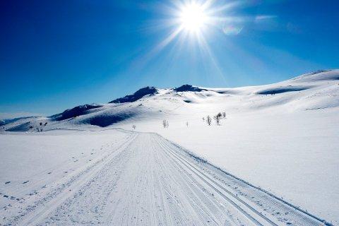 GODVÆR: Årets beste uke værmessig, varsler meteorologen.