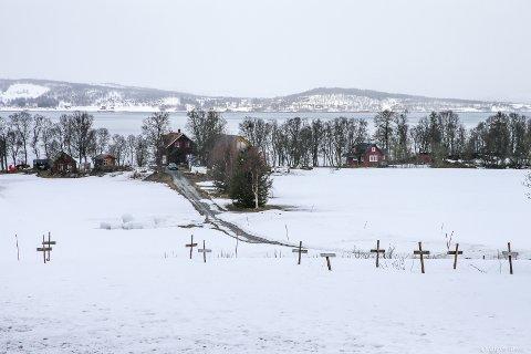 """SAD TIMES: """"Våren - død og begravet"""" er den poetiske tittelen på dette fotografiet av en vinter som aldri gir seg."""