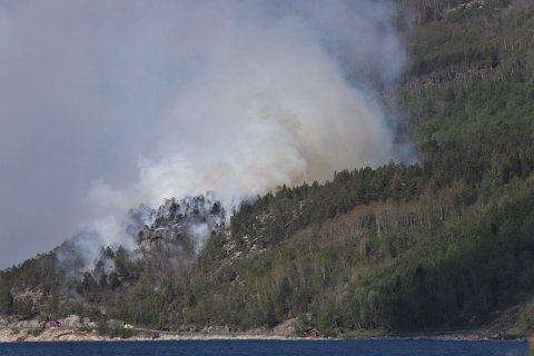 SKOGBRANN: Brannvesenet hadde ikke kontroll på skogbrannen i Skjomen lørdag ettermiddag.