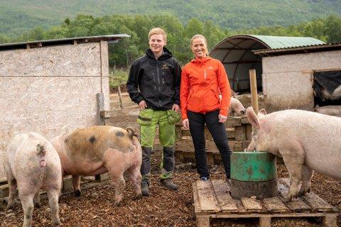 GRISER GÅR UTE: Eirik Østring og Tonje Fjeldstad kan vinne kåring blant unge bønder, hvis de har griseflaks.