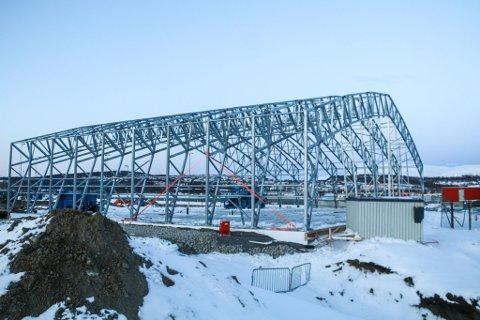 FORT GJORT: Her har rammeverket for den midlertidige utenlandsterminalen allerede kommet opp på Langnes Lufthavn.  - Det er tett fremdrift, men jeg kan forsikre om at vi er helt i henhold til planen, forteller prosjektsjef i Consto Nord Jens Solvang.