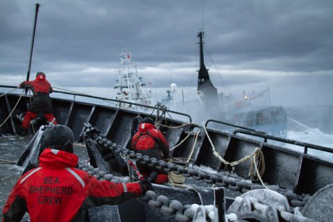 """I følge informasjonen Sea Shepherd har gitt til dette bildet viser det en japansk hvalfanger som krysser foran baugen til Sea Shepherd-skuta """"Bob Barker"""" under en seks timer lang aksjon. Gjengitt med tillatelse fra Sea Shepherd."""