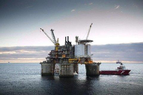 Nesten 1 av fire medlemmer i Lederne jobber i petroleumsnæringen. Det vil si at cirka 4000 av organisasjonens 17.000 medlemmer, er ansatt i petroleumsbransjen.