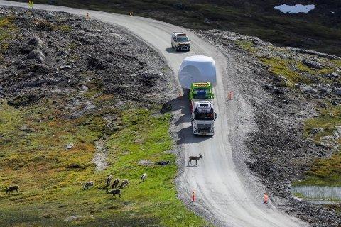 PÅ VEI: Her fraktes vindturbinene opp mot fjellet på Kvaløya.