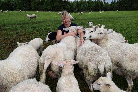 – For den som ikke har igjen beite, er nok det å slippe sauen nå eneste alternativ. Det er en veldig fortvilet situasjon, sier leder Linda Suleng i Østre Toten Bondelag.