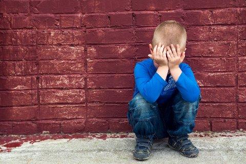 SVIKT: Mange barn har ikke fått den hjelp de har rett til å få på grunn av sviktende oppfølging av Land barneverntjenesten fra rådmannen i Nordre Land, slår en revisjonsrapport fast.