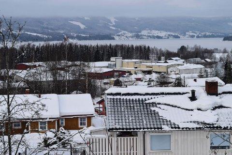Den kommunale kattefangsten i Hov skal foregå i boligområdet Fagerlund/Breskebakke.