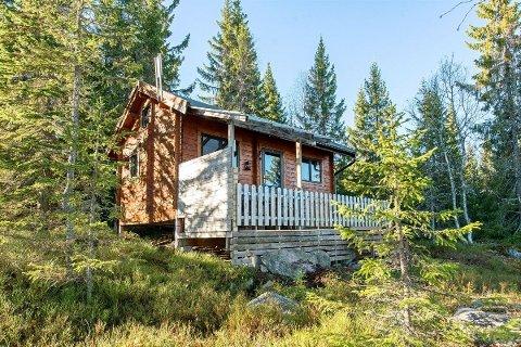 PÅ TOTENÅSEN: Ved Bergsjøen på Totenåsen kan du få deg en 21 kvadratmeter stor hytte til rundt en halv million.