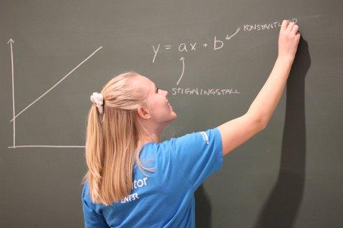 INSPIRERER: Martine Hanshus Edvardsen fra Hov skal inspirere jenter til å velge teknologiske fag.