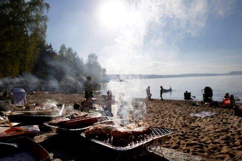 HUSK GOD HYGIENE: Sommeren er høysesong for mat- og vannbårne sykdommer. Ved å følge noen enkle råd fra Folkehelseinstituttet kan man redusere risikoen for å bli smittet.
