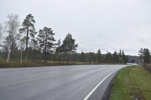 SKAL SIKRES: Vegvesenet skal oppgradere riksvei 4 mellom Lygna og Bruflat i Vestre Toten med en rekke sikkerhetstiltak. Bildet er tatt rett sør for Lygnasæter.