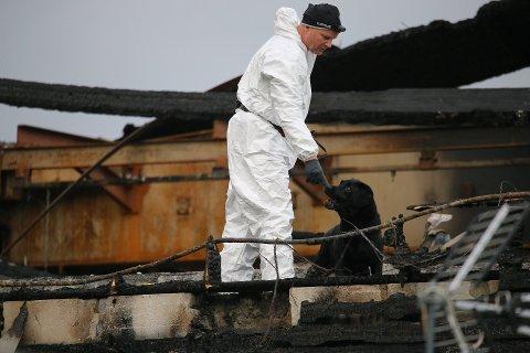 UNDERSØKELSER: Både Kripos, politiet og brannvesen har jobbet med store ressurser på branntomta i Moelv siden brannen brøt ut tidlig onsdag.